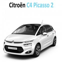 Pack intérieur led pour Citroën C4 Picasso 2