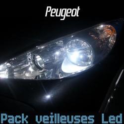 Pack ampoules veilleuses led pour Peugeot