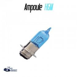 Ampoule halogène effet xénon H6M 35/35w